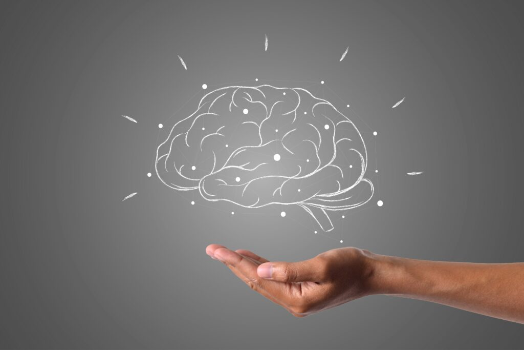 cerebro-1024x683.jpg